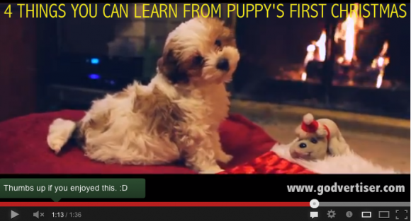 Nanalew - Puppy's First Christmas Video on YouTube